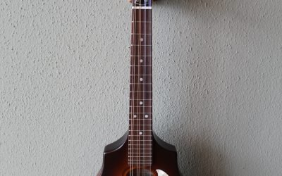 Just added to the store: Seagull S8 Acoustic/Electric Mandolin with Gig Bag – Sunburst