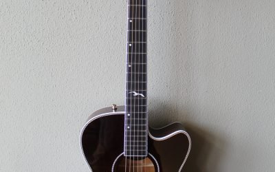 Just added to the store: Seagull Artist Mosaic Cutaway CH EQ Acoustic Electric Guitar with Gig Bag – Bourbon Burst
