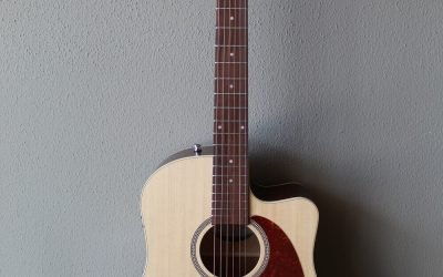 Just added to the store: Seagull Coastline Slim CW Spruce Top QIT Acoustic/Electric Guitar with Gig Bag – B Stock